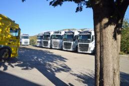trattori-stradali-perugia-9